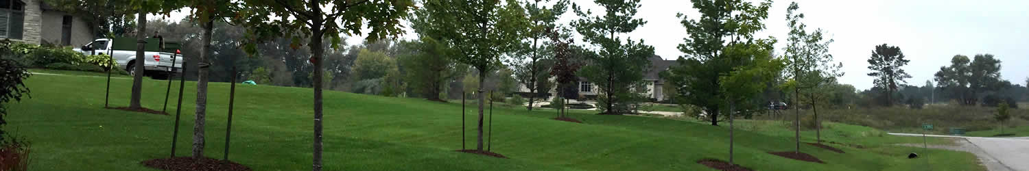whitby landscaping tree care planting