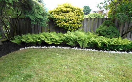 Backyard English Garden with River Stone Border