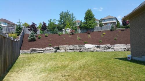 Backyard Garden Bed Mulch After 1