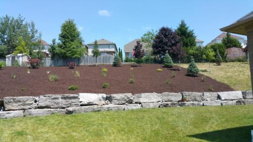 Backyard Garden Bed Mulch After 2