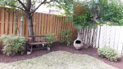 Backyard Garden Bed Thinning Removal After