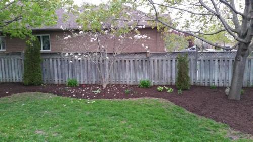 Backyard Ideas Garden After 2