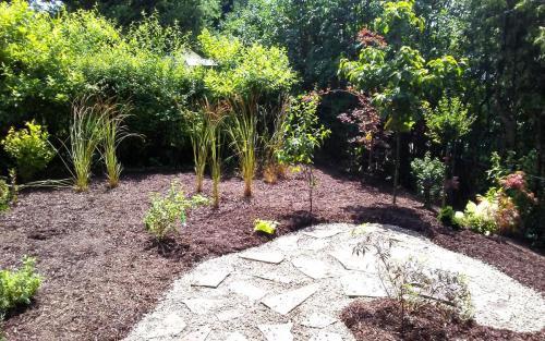 Backyard Oasis Garden Bed Planting1