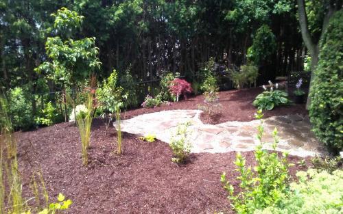Backyard Oasis Garden Bed Planting2