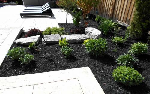 Backyard Planting  Design2