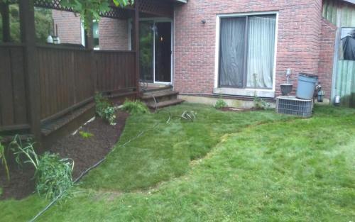 Backyard Sod  Garden Rejuvenation