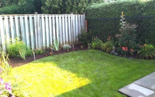 Backyard curvy garden bed installation