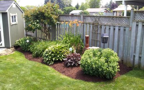 Established Garden Bed Cleanup