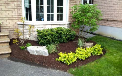 Front Garden Bed Planting  Flowers2