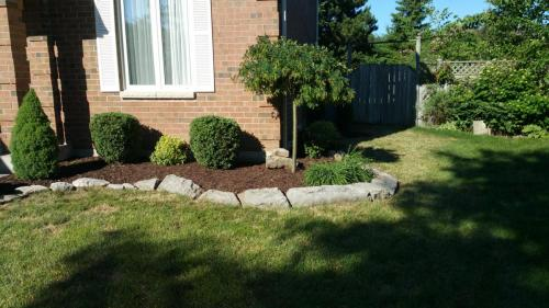 Front Yard Design Mulch After 2