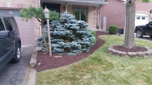 Front Yard Garden Clean-Up After 1