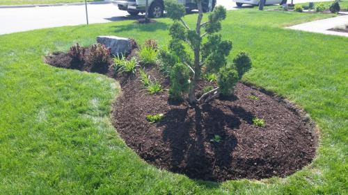 Front Yard Garden Edging Ideas After