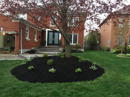 Front Yard Garden Planting After