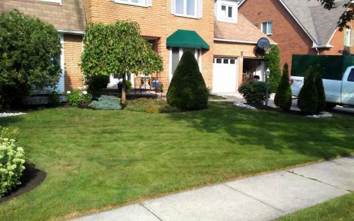 Front Yard Mature Garden Cleanup with River Stone2