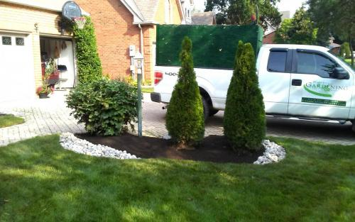 Front Yard Mature Garden Cleanup with River Stone3