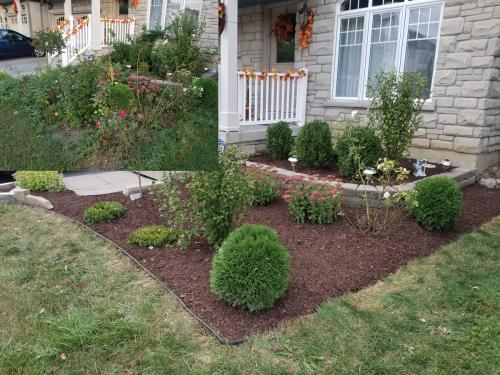 Front Yard Small Garden Bed Clean-Up After