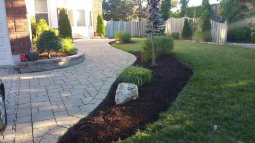 Front Yard Walkway Garden Edging