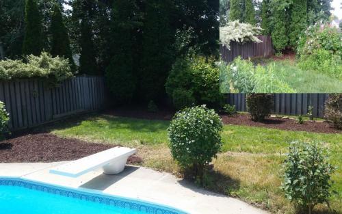 Garden Bed Clean-Up Mulch Gardener 2