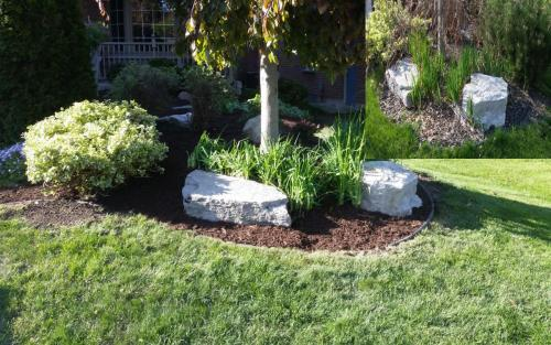 Garden Bed Pruning and Clean-Up