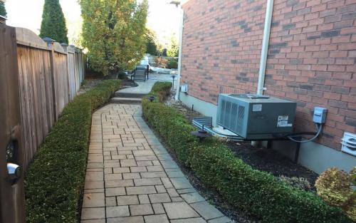 Garden Path Planting