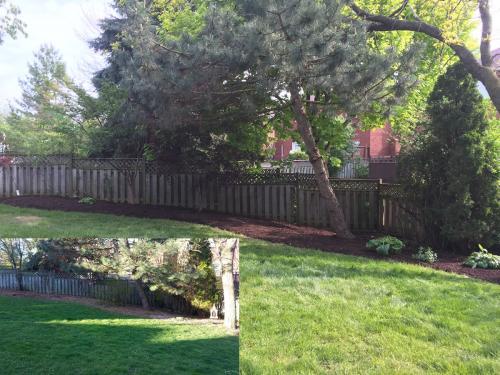 Landscaping Design Ideas Garden After 1