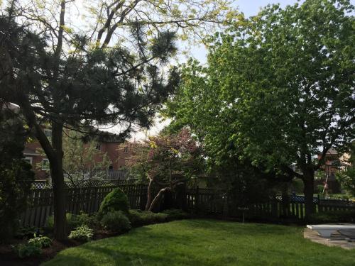Landscaping Design Ideas Garden After 4