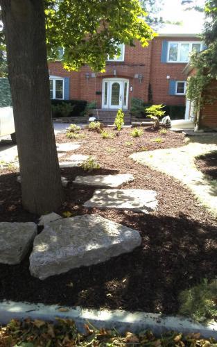 Large Front Garden Bed Renovation
