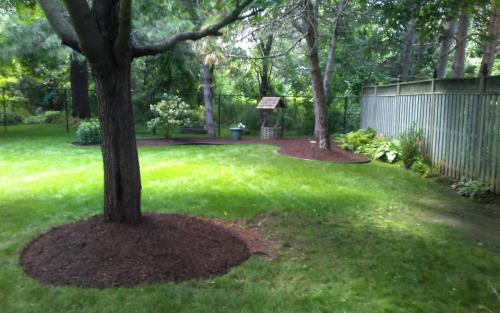 Large Garden Bed Cleanup1
