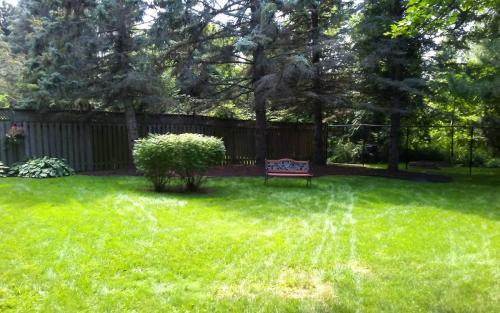 Large Garden Bed Cleanup2