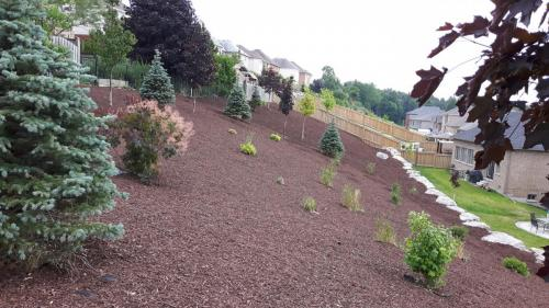 Large Garden Bed Mulch After 3