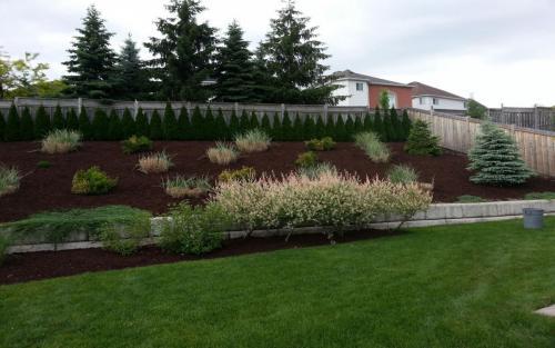 Large Garden Bed Mulch Cedars