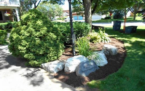 Mature Garden Bed Cleanup  Design