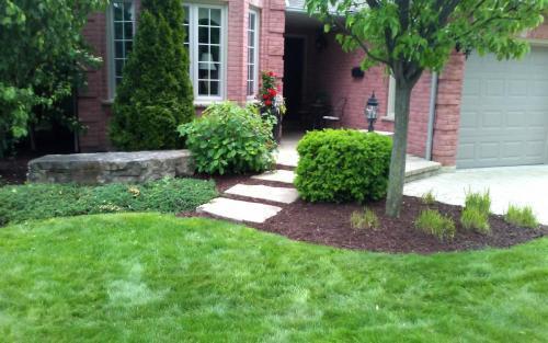 Mature Garden Cleanup1