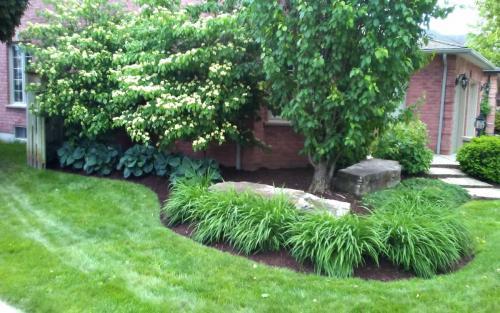 Mature Garden Cleanup2