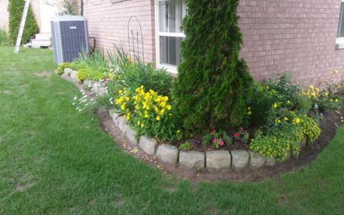 Plants Planting Colourful Perennials 3