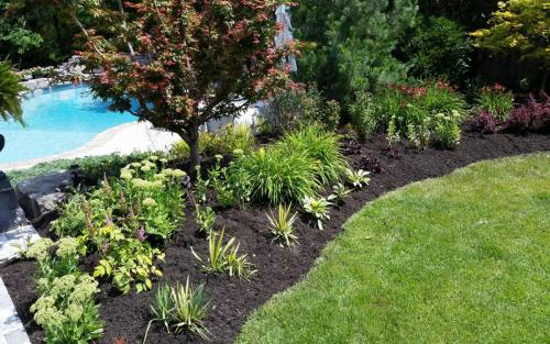 Pool Landscaping and Flower Beds