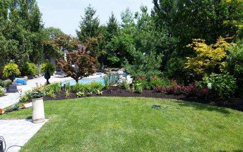 Pool Landscaping and Flower Beds 3