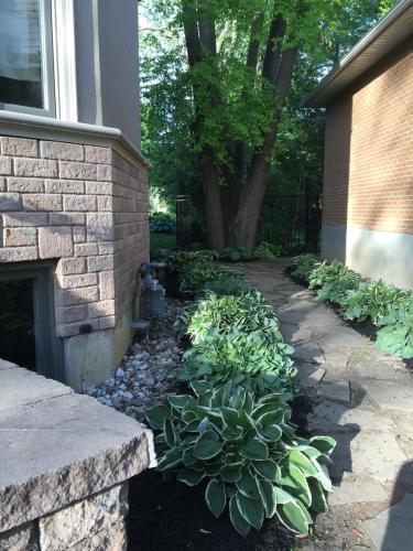 Side Yard Garden Bed Idea