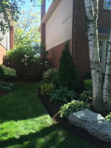Side Yard Garden Edging Idea