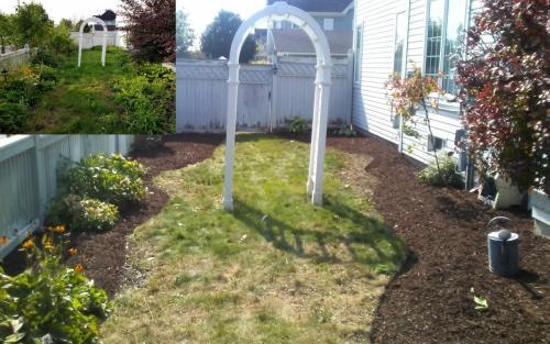 Sideyard Cleanup After