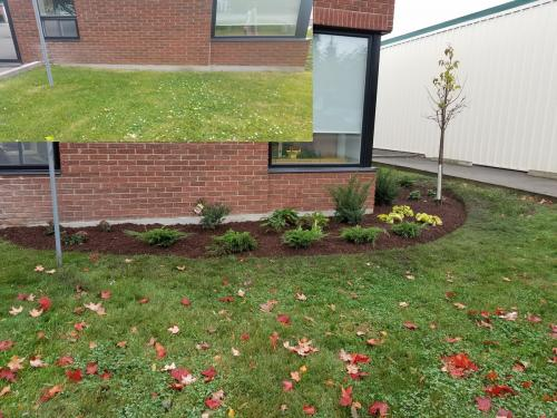Small Front Garden Design After 1