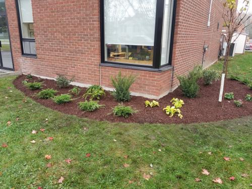 Small Front Garden Design After 2