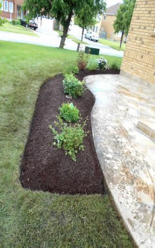 Small Front Garden Installation1