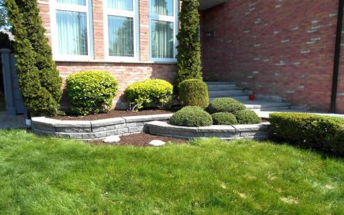 Small Front Garden Pruning