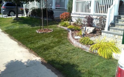 Small Front Yard Garden  Sod