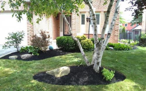 Small Garden Bed Installation  Planting2