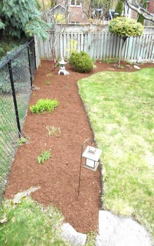 Small Garden bed with Mulch