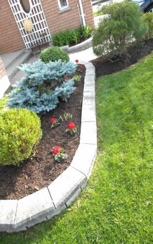 Spring Annual Planting
