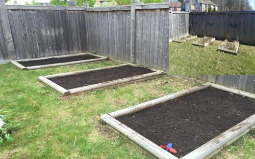 Vegetable Garden Cultivating