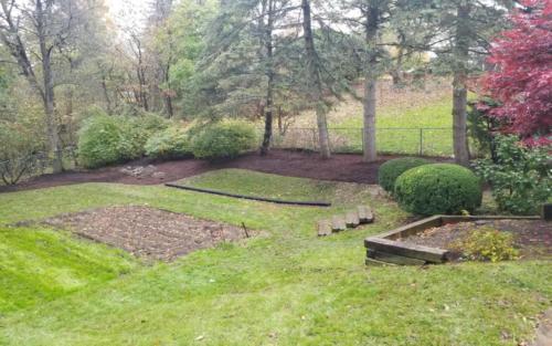 backyard curvy garden cleanup